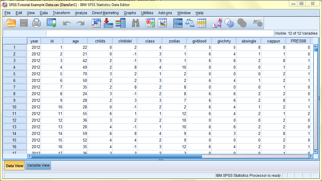 SPSS screenshot